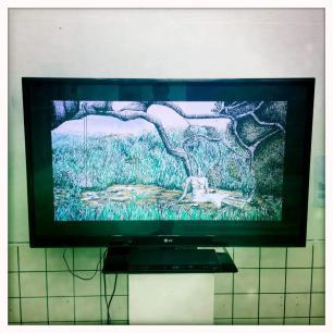 Barbadian artist Versia Harris' video at the Youth Biennale