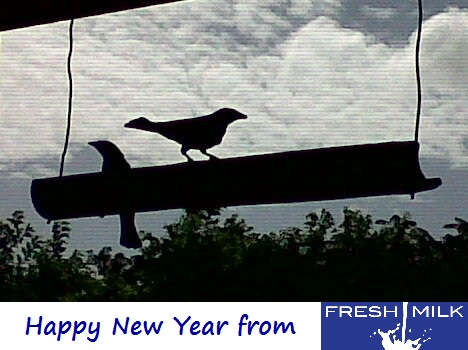 Happy New Year from FRESH MILK!