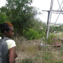 Versia exploring the Fresh Milk grounds