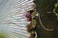 Katherine Kennedy - wall installation
