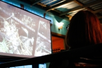 Screening of a selection from Project 35 Volume 2