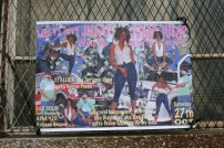 Alberta Whittle's fete posters. Photograph by Rayanne Bushell