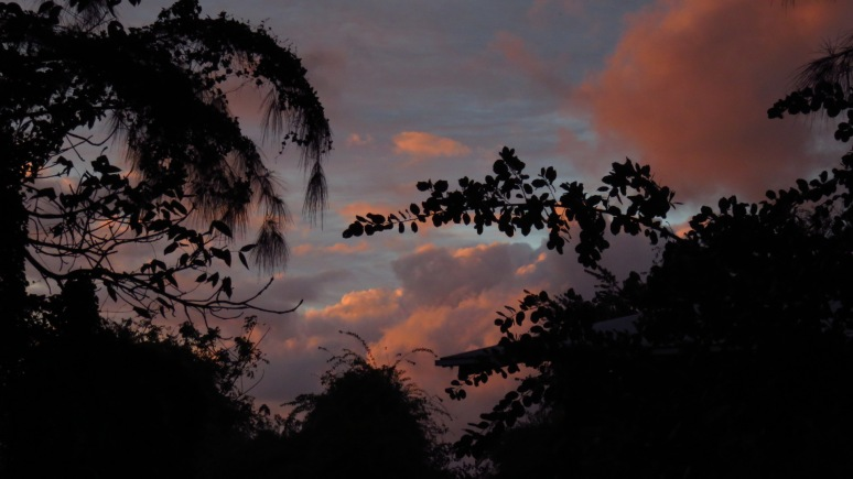 Sunset from studio