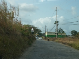 On the road heading to Bathsheba