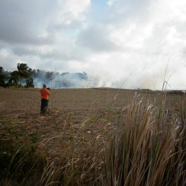 Scorched fields in St. John.