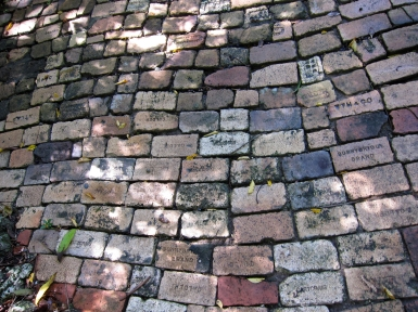 A pathway in Bathsheba paved with ballast bricks
