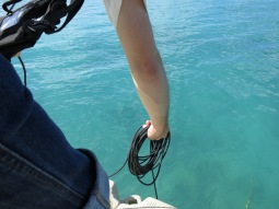 Ask and the hydrophone