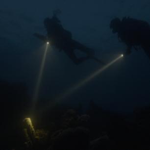 Diving at dusk