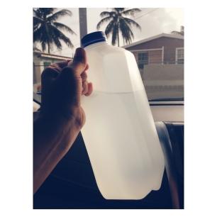 Coconut water in Barbados