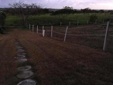 Grounds around Fresh Milk