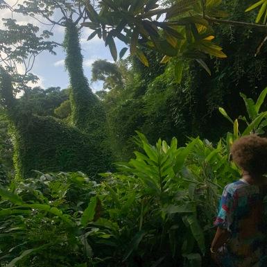 Flower Forest Barbados